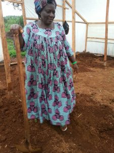 Woman preparing her greenhouse for cultivation of tomatoes and cucumbers